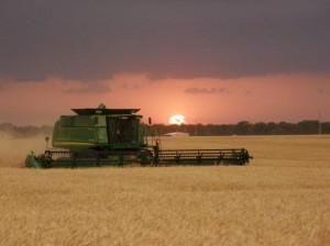 De rigtige varer, til de rigtige priser | Agro Nord A.m.b.a